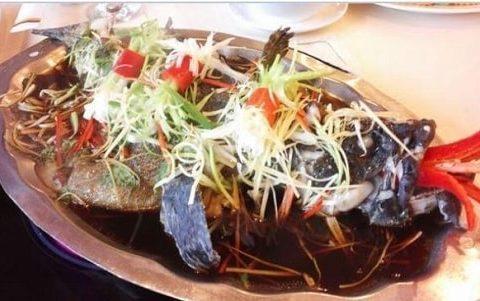 Những món ngon với cách chế biến cá tầm siêu dễ tại căn bếp của bạn.