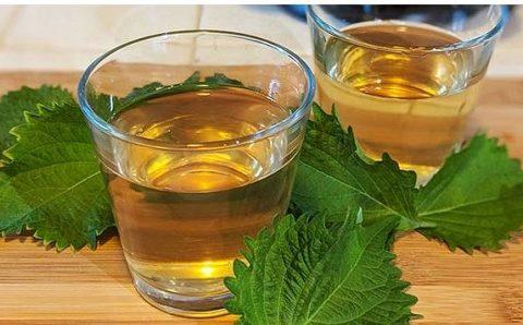 Tác dụng của uống nước tía tô là gì?