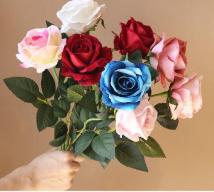 Hoa hồng đẹp với sắc xanh, đỏ, tím, vàng, đen và ý nghĩa