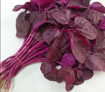 Mua rau dền đỏ chất lượng nhất ở đâu Hà Nội và Hồ Chí Minh?